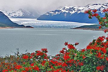 Södra Patagonien – Upsalaglaciären