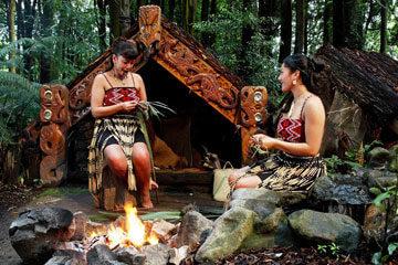 Dunedin - Rotorua