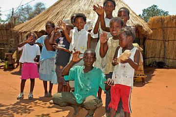 Hemkomst från Afrika