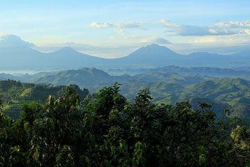 Parc Nationals des Volcans