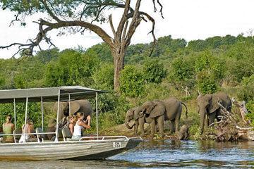 Safari Botswana – Okavangodeltat