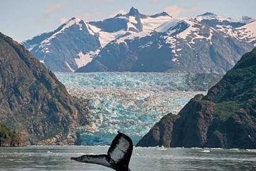 Glaciärernas land