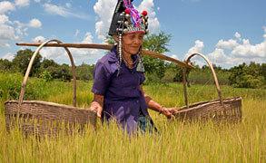 Laos1