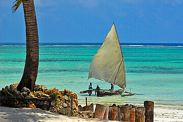 Dag 5: Zanzibar
