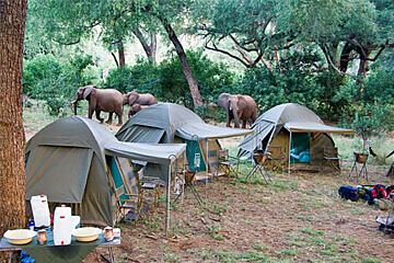 Safari i Botswana – Khwai