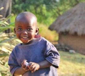 Malawi med engelsk guide