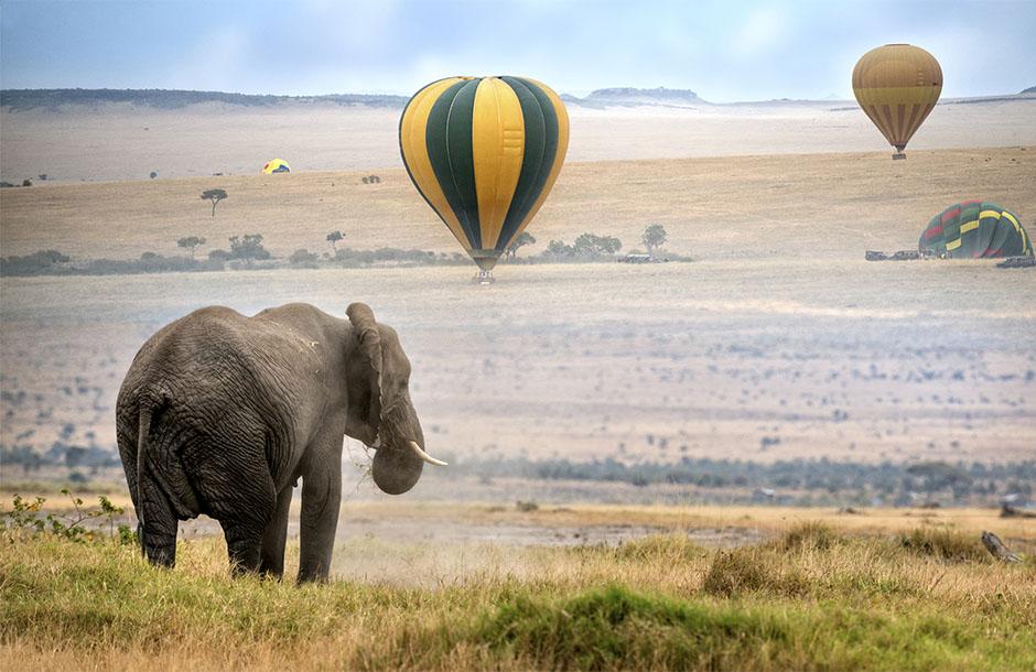 Ballongsafari