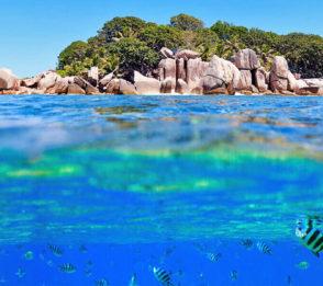Seychellernas natur