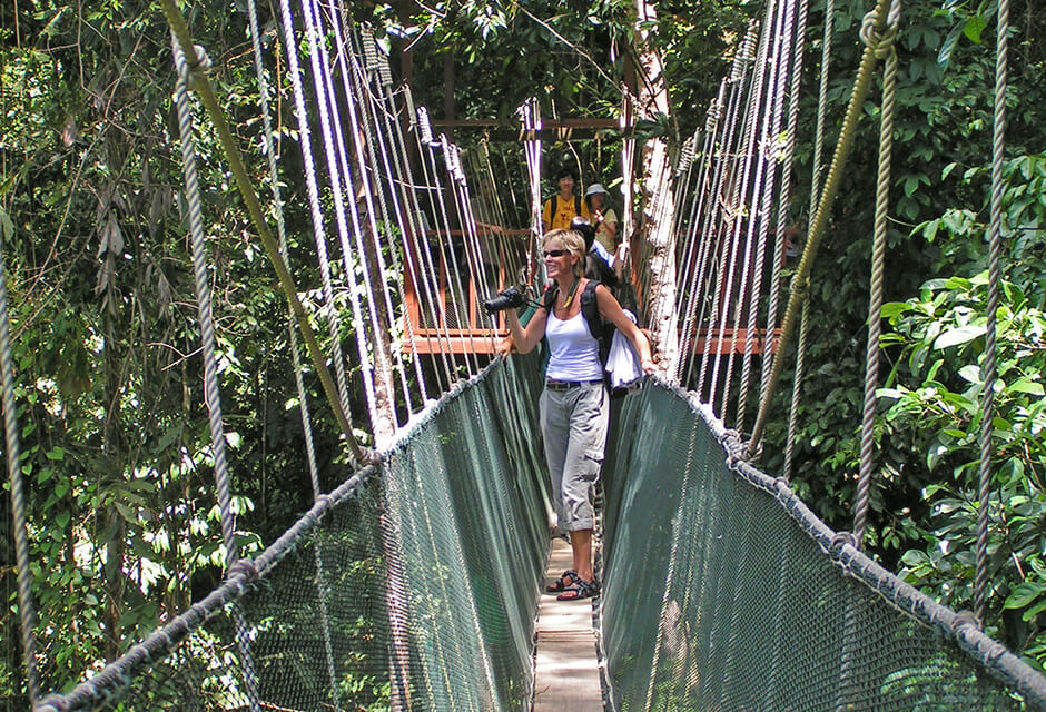 Naturvård i Borneo