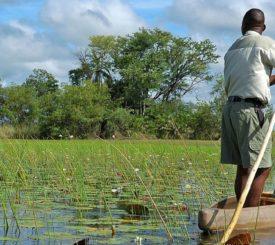 Botswana och Victoriafallen – Online presentation