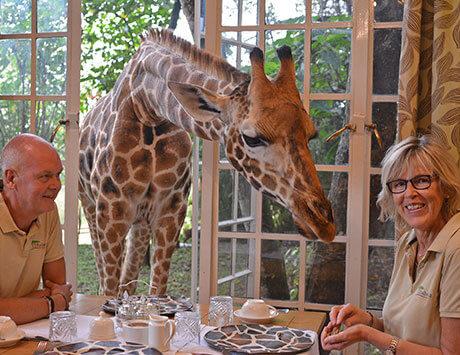 Frukost med girafferna